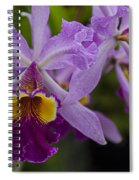 Two Pink Purple Orchids Spiral Notebook