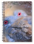 Two Turtle Doves Card Spiral Notebook