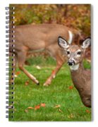 Two Visitors Spiral Notebook