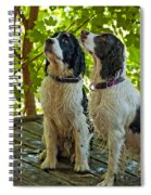 Two Wet Puppies Spiral Notebook