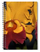 Two Yellow And Red Orchids Spiral Notebook