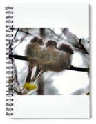 Two's Company Spiral Notebook