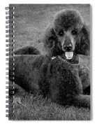 Tyler In Black And White Spiral Notebook