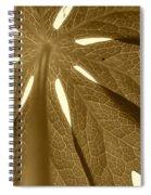 Umbrella In Sepia Spiral Notebook