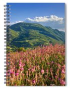Umbria Spiral Notebook