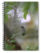 Under The Canopy Spiral Notebook