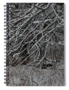 Under The Old Apple Tree Spiral Notebook