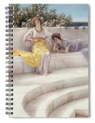 Under The Roof Of Blue Ionian Weather Spiral Notebook