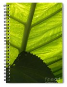 Underneath The Banana Plant Leaf Spiral Notebook