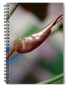 Unfolding Leaf Spiral Notebook