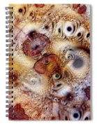 Unphased And Confused Spiral Notebook