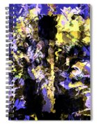 Untitled Blue Spiral Notebook