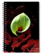 Untitled Cally Lily Spiral Notebook