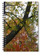 Up There Spiral Notebook
