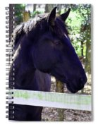 Upclose And Personal Spiral Notebook