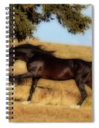 Uphilll Gallop Spiral Notebook