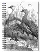Upland Geese Spiral Notebook