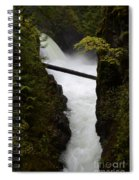 Upper Qualicum Falls 2 Spiral Notebook