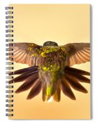 Usaf Hummingbirds Wings Spiral Notebook