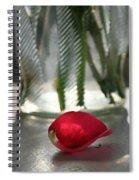 Valentine's Wishes Spiral Notebook