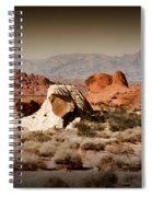 Valley Of Fire Spiral Notebook