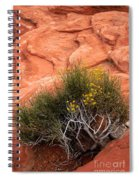 Valley Of Fire Yellow Vegetation Nevada Spiral Notebook