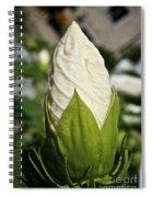 Vanilla Hibiscus Spiral Notebook