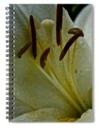 Vanilla Ice Spiral Notebook
