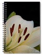 Vanilla Lily Spiral Notebook