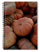 Varied Pumpkins Spiral Notebook