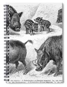 Varieties Of Swine Spiral Notebook