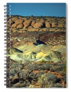 Varying Landscape Spiral Notebook