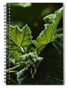Vegetative Dragon Spiral Notebook