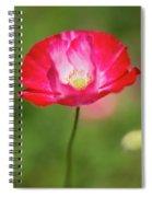 Velvet Petals Spiral Notebook