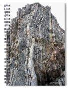 Vertical Sedimentary Strata Spiral Notebook
