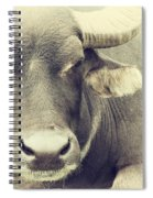 Very Serious Spiral Notebook