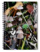 Very Tull Mushrooms Spiral Notebook