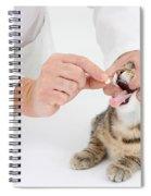 Vet And Kitten Spiral Notebook