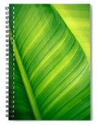 Vibrant Green Leaf Spiral Notebook