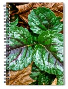 Vibrant Ground Cover  Spiral Notebook