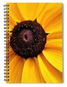 Vibrant Summer Spiral Notebook