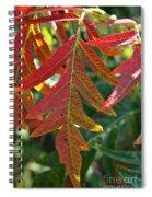 Vibrant Veins Spiral Notebook