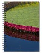 Victoria Amazonica Leaf Spiral Notebook