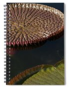 Victoria Amazonica Leaves Spiral Notebook
