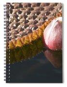 Victoria Vi Spiral Notebook