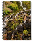 Vidae Falls Spiral Notebook
