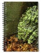 Vietnamese Mossy Frog Spiral Notebook