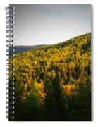 Vignette Of Autumn Gold  Spiral Notebook