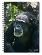 Village Elder Spiral Notebook