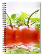 Vine Tomatoes And Salad With Water Spiral Notebook